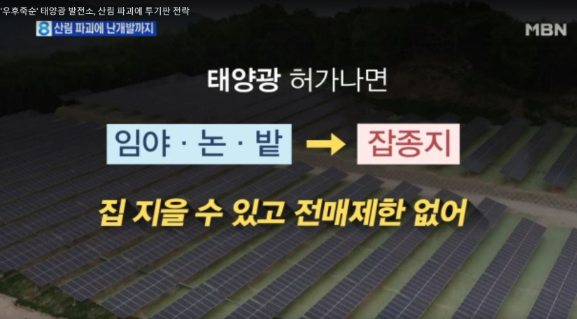 태양광 투기판